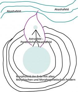 Skizze Morphofeld
